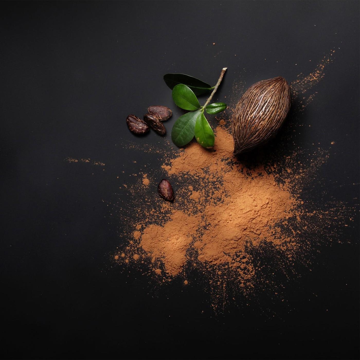 receta de Cacao Amargo En Polvo (22/24%)