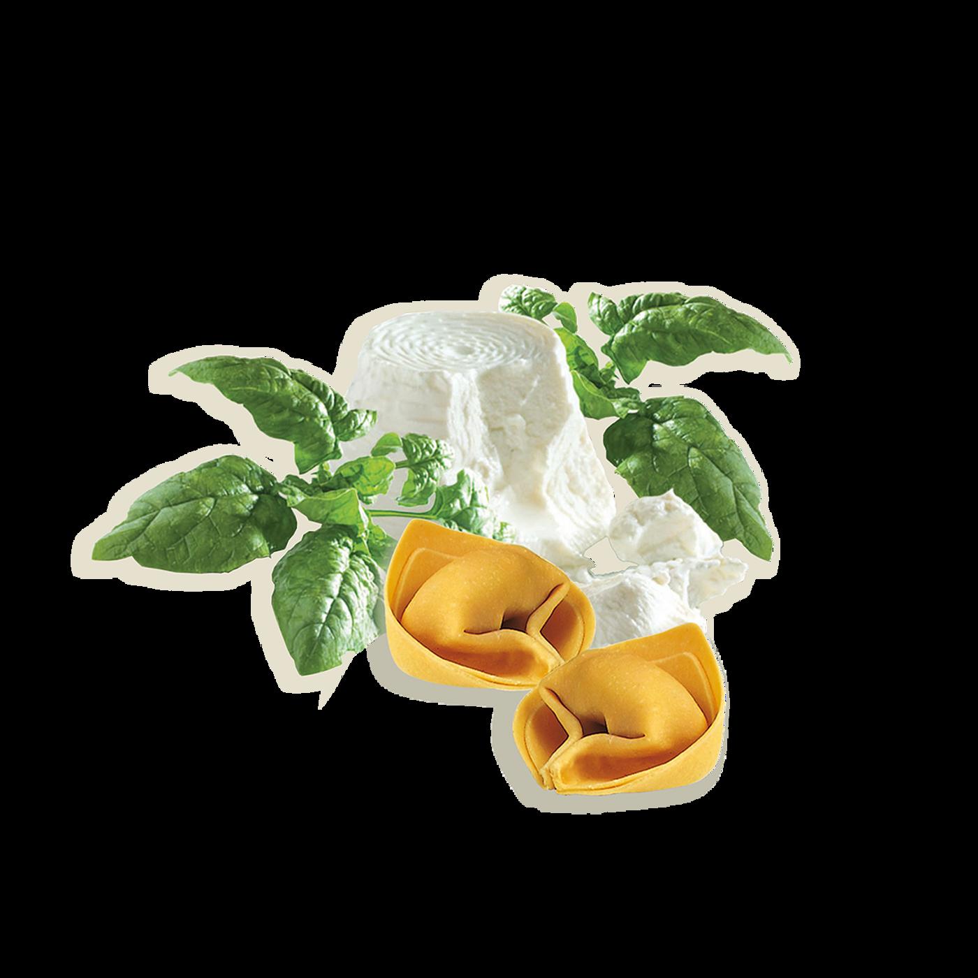 Tortelloni Con Ricotta Y Espinacas Precocido
